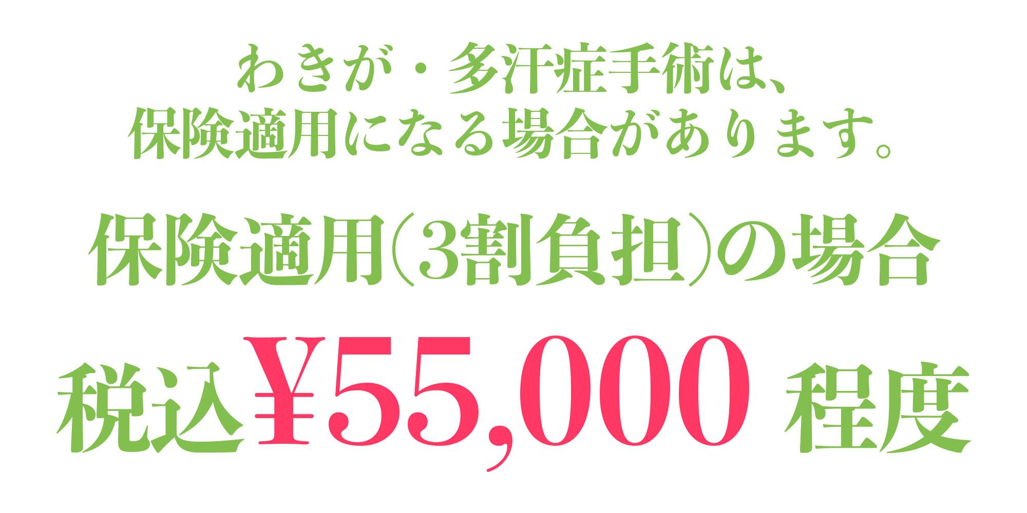 わきが・多汗症手術は、 保険適用になる場合があります。 保険適用(3割負担)の場合 税込¥55,000 程度